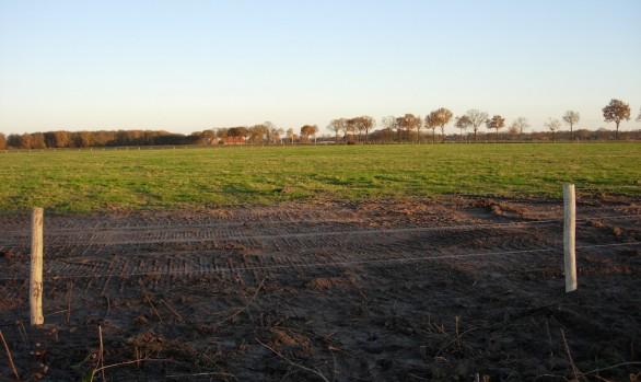 Natuurreservaat de Grote Peel | Herman Kessels BV